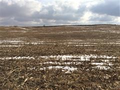 110.58+/- Acres Shelby County