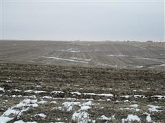166.7+/- Acres Platte County, Nebraska