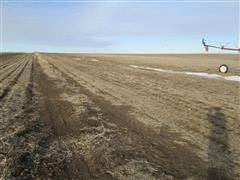 159.74+/- Acres Antelope County, NE
