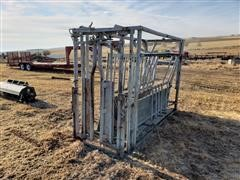 Squeeze Chute W/Self Catching Head Gate & Rear Gate