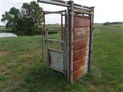 WW Palpitation Cage