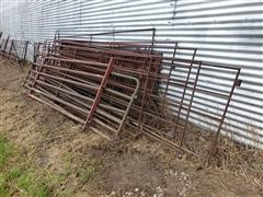 Hog Fencing Panels & Gates