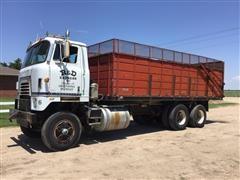 1981 International COF4070B Grain Truck