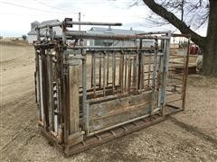 Pearson SF2 Squeeze Chute & Palpation Cage