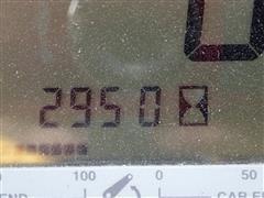 P6100084.JPG