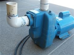 Monarch NSPHE 300B Residential or Light Commercial Electric Water Pump