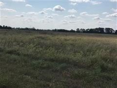 80+/- Acres Sedgwick County KS