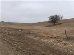 160+/- Acres Boone County, Nebraska