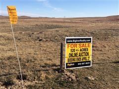 520.75 Acres Custer County, NE