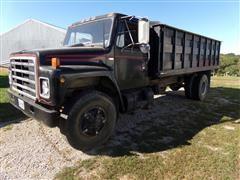 1981 International 1900 Grain Truck