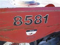 DSCF3116.JPG