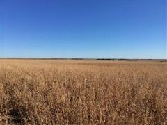 560+/- Acres Howard County, NE