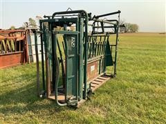 Big Valley Cattle Working Chute