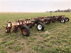 Lilliston 3-Pt Row Crop Rolling Cultivator