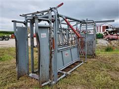 Filson Livestock Chute & Palpation Cage