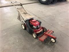 Snapper Push Mower W/Bagger & Thatcherizer