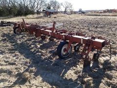 "International 183 8 Row 36"" Cultivator"