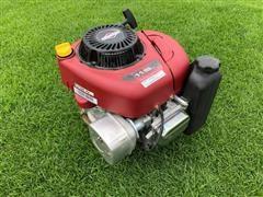 2010 Briggs & Stratton 217902 Gas Lawn Mower Engine
