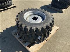 Titan 9.5-20 R-1 Tires