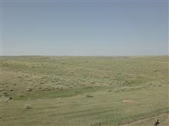 320 Acres Cheyenne County, Kansas