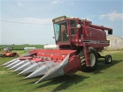 International 1460 Combine With 6 Row Header