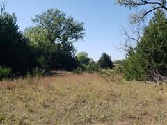 Hunting Lease 1,300+/- Acres Wheeler County