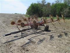 Tonutti 12 Wheel Rake