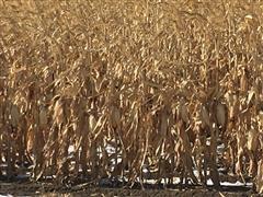235+/- Acres Scotts Bluff, County, Nebraska