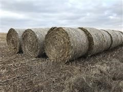 5'x6' Round Net Wrapped Bales Of Feed Hay