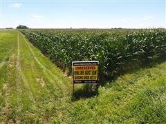 Tract 2:  37.9+/- Acres Hamilton County, Nebraska