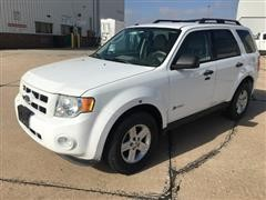 2010 Ford Escape Hybrid 4x4 SUV