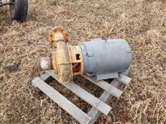 Berkeley B4JFBM Pump W/Electric Motor