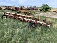 Lilliston 8R30 Rolling Cultivator