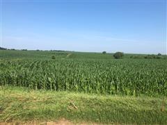 Tract 1:  80+/- Acres Colfax County, NE