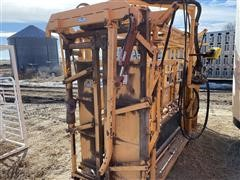 For-Most Hydraulic Cattle Chute