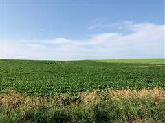 Tract 4:  80+/- Acres Colfax County, NE
