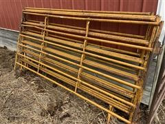Baasch 10' Cattle Panels