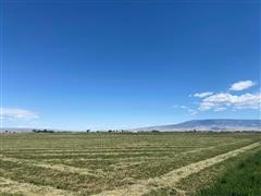 173.17+/- Acres Montrose County, CO