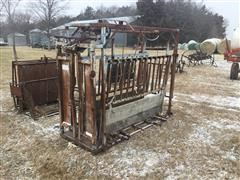 Big Valley Cattle Processing Chute