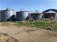 4) Grain Bins