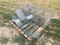 Live Traps And Small Animal Cage
