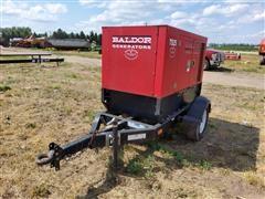 Baldor Portable Generator